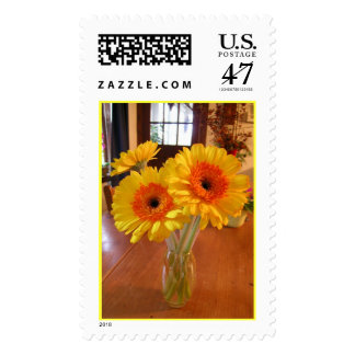 Gerber Daisies on my kitchen table Postage Stamp