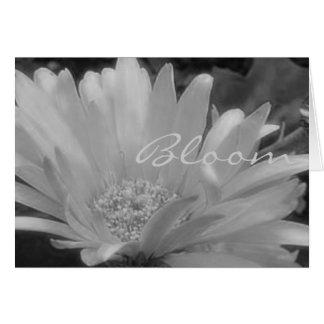 Gerber Daisy Bloom Card
