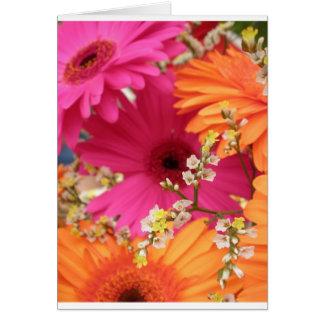 Gerber Daisy Card