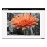 Gerber Daisy Color Splash Country Cute Laptop Decal