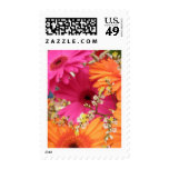 Gerber Daisy Postage Stamp