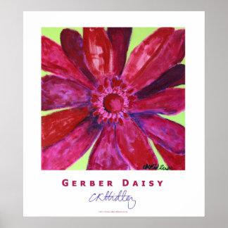 Gerber Daisy Poster