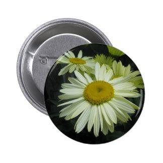 Gerber Daisy Shining Bright Pinback Button