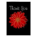 Gerber Daisy Thank You Card