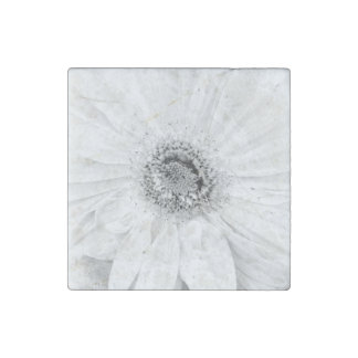 Gerber Daisy Upclose Stone Magnet