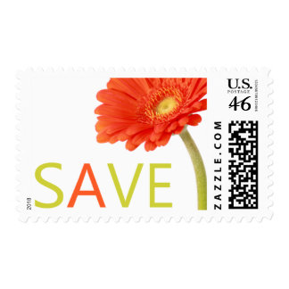 Gerber Daisy Wedding Save The Date Stamp