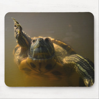 Gerber the Turtle Mouse Pad