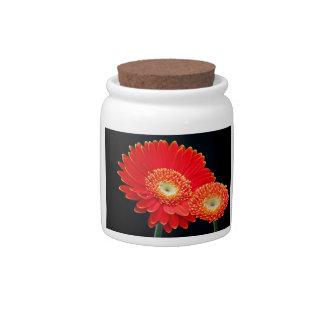 gerbera candy jar