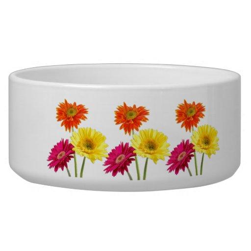 Gerbera Daisies Dog Bowl