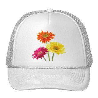 Gerbera Daisies Trucker Hats