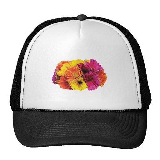 Gerbera Daisies Mixed Colors Mesh Hat