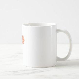 Gerbera Daisies Orange Mug