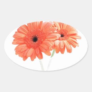 Gerbera Daisies, Orange Oval Sticker