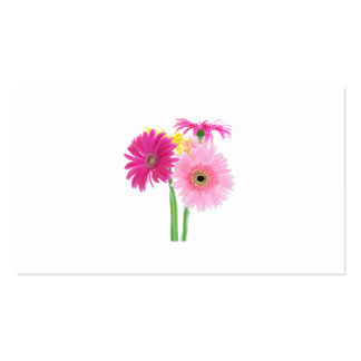 Gerbera Daisies Pink Double-Sided Standard Business Cards (Pack Of 100)