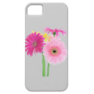 Gerbera Daisies Pink iPhone SE/5/5s Case