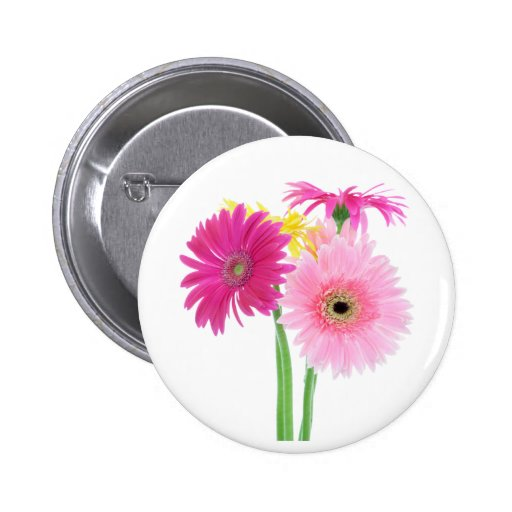 Gerbera Daisies Pink Pinback Button