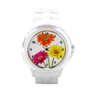 Gerbera Daisies Wristwatch