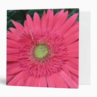 Gerbera Daisy 3 Ring Binder