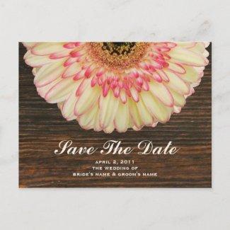 Gerbera Daisy & Barnwood Save The Date Postcard postcard