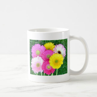 Gerbera Daisy Colors Mugs