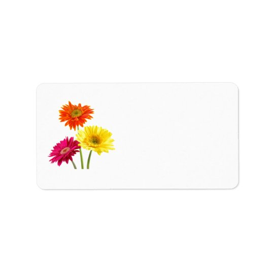 Gerbera Daisy Delight Label