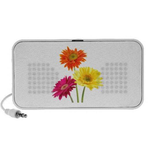 Gerbera Daisy Delight Laptop Speakers