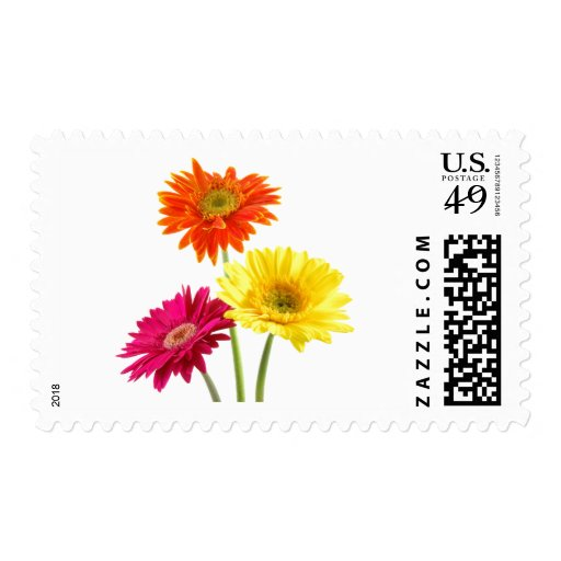 Gerbera Daisy Delight Stamps