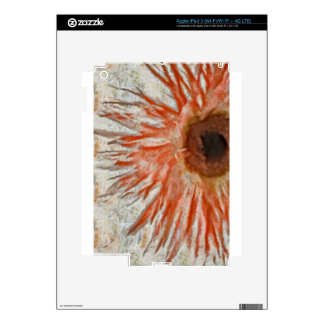 Gerbera Daisy Eye iPad 3 Skin