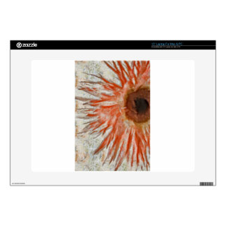 Gerbera Daisy Eye Laptop Decal