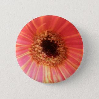 Gerbera Daisy Flower Button