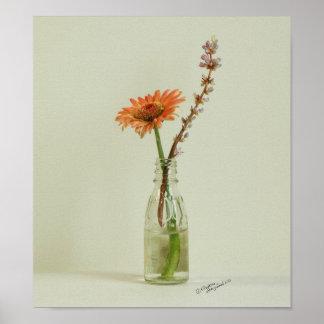 Gerbera Daisy Flower Vase Poster