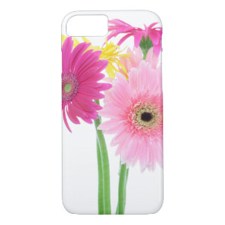 Gerbera Daisy Flowers iPhone 7 Case