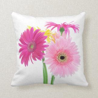 Gerbera Daisy Flowers Pillows