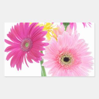 Gerbera Daisy Flowers Rectangular Sticker