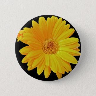 Gerbera Daisy (Gerbera hybrida) - Yellow Pinback Button