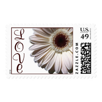 Gerbera Daisy/ Love Postage Stamp