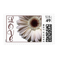 Gerbera Daisy/ Love Postage Stamps