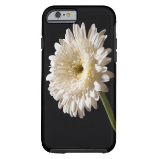 Gerbera daisy on black background tough iPhone 6 case
