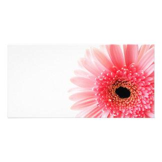 Gerbera Daisy Photo Card