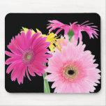 Gerbera Daisy Piink Flowers Mouse Pad