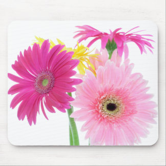Gerbera Daisy Pink Flowers Mouse Pad