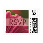 Gerbera Daisy RSVP stamps