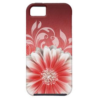 Gerbera Daisy Scroll 1 | red burgundy iPhone 5 Case