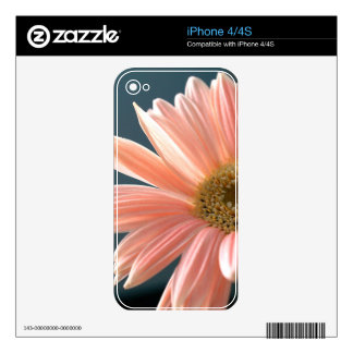 gerbera-daisy skin for the iPhone 4S