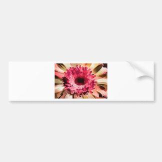 Gerbera Daisy Squared Bumper Sticker