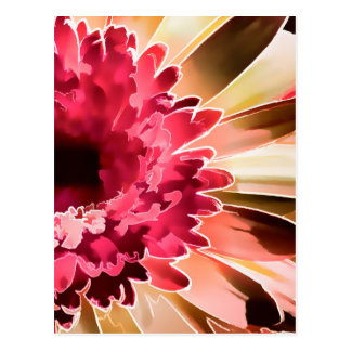 Gerbera Daisy Squared Postcard