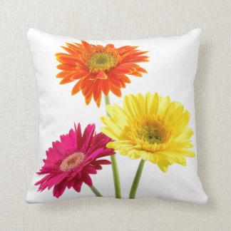 Gerbera Daisy Throw Pillow