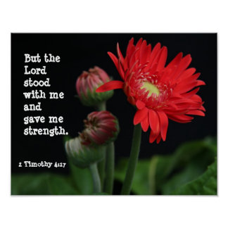 Gerbera Daisy w/ Scripture Verse (Timothy  4:17) Poster