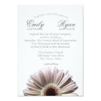 Gerbera Daisy White Blush Card
