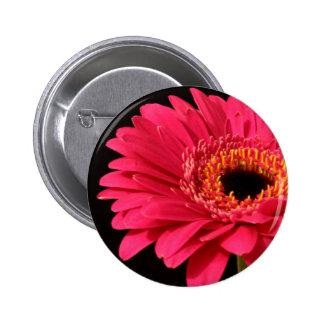 Gerbera en rosa pin